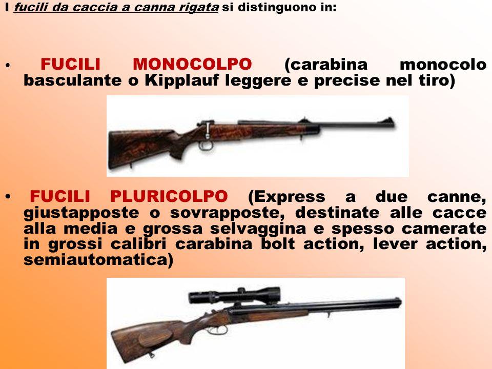 I fucili da caccia a canna rigata si distinguono in:
