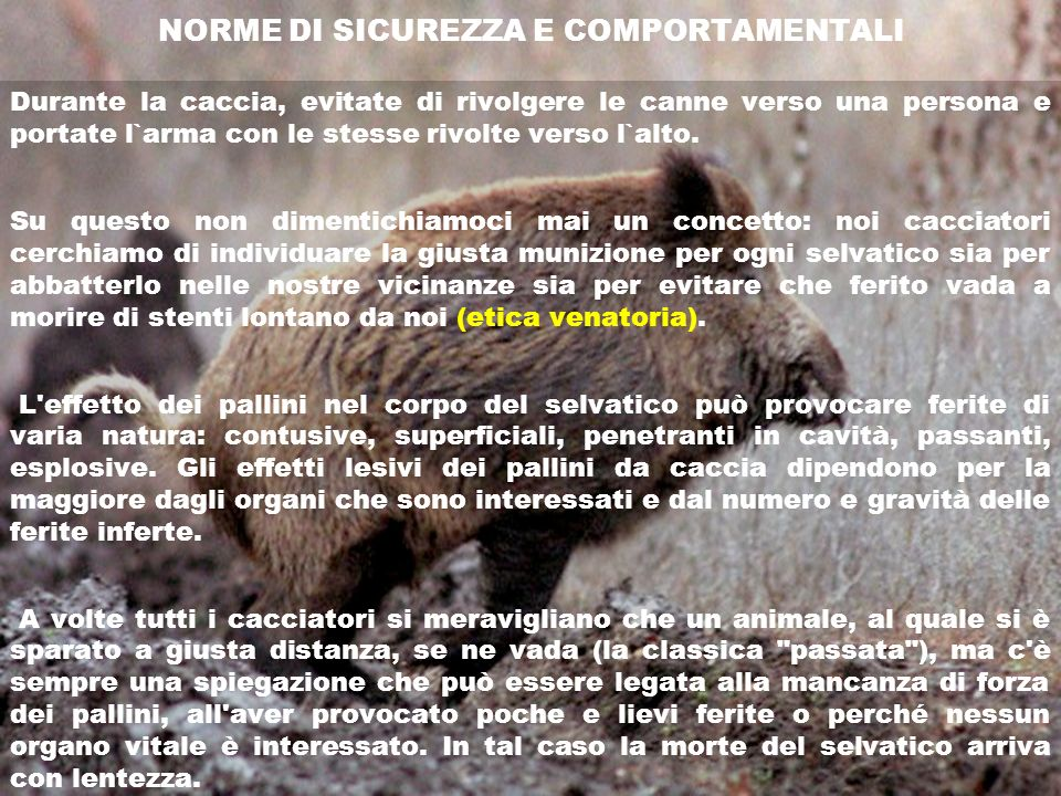 NORME DI SICUREZZA E COMPORTAMENTALI
