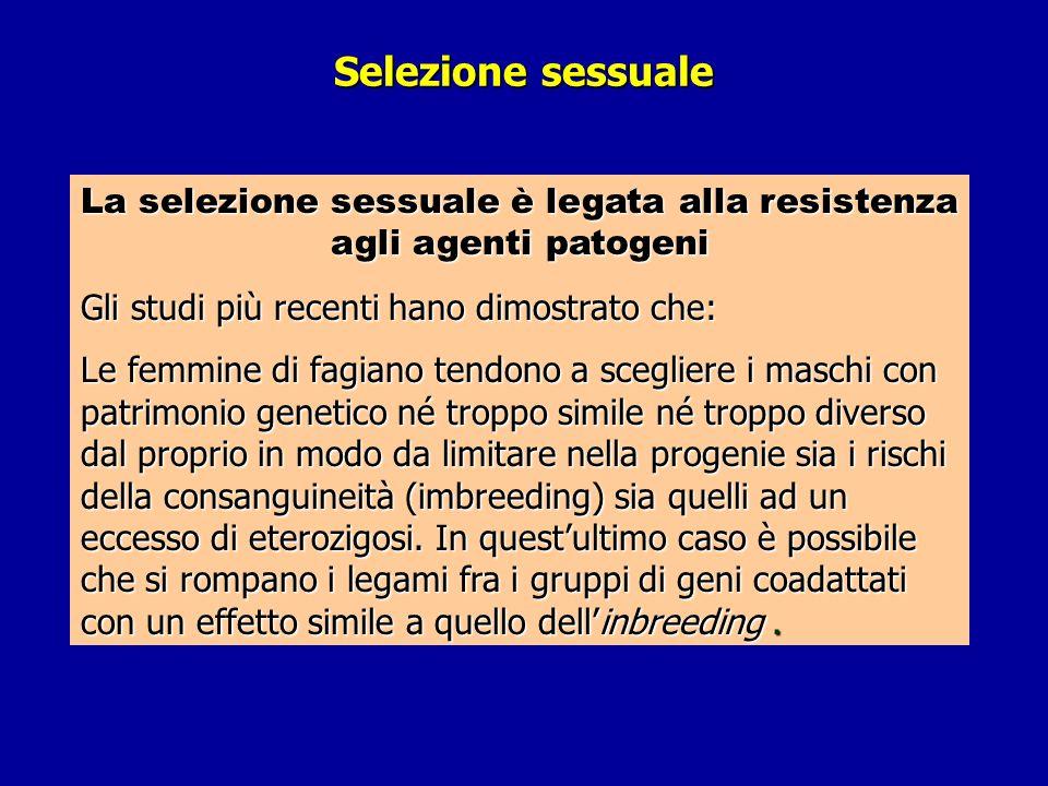 La selezione sessuale è legata alla resistenza agli agenti patogeni