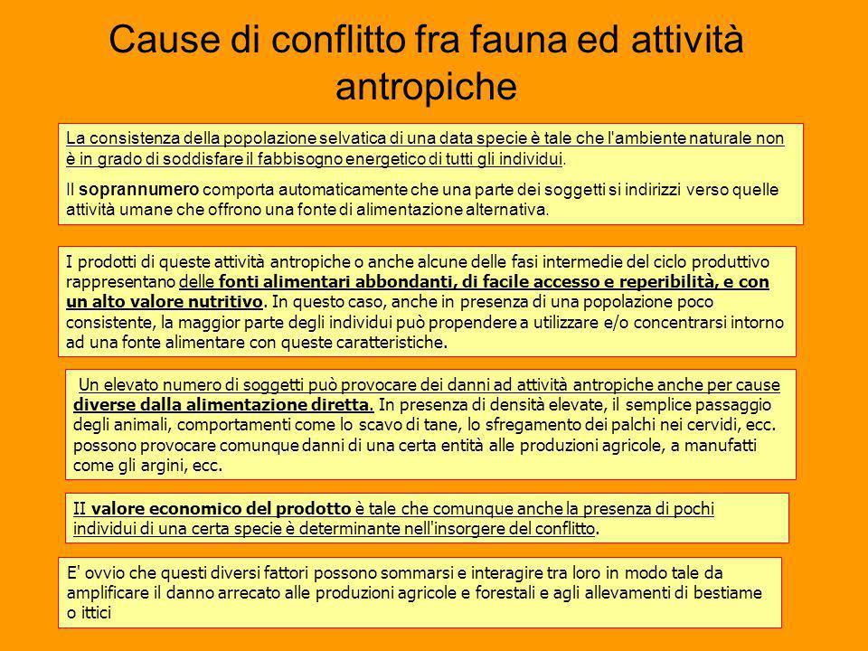 Cause di conflitto fra fauna ed attività antropiche