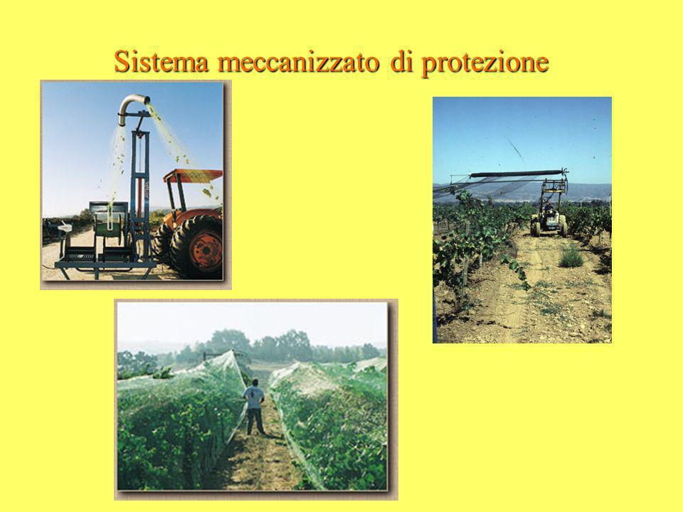 Sistema meccanizzato di protezione