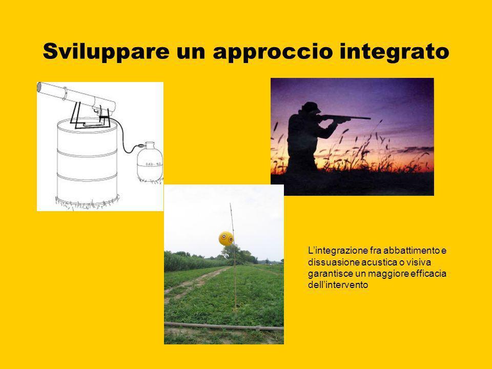 Sviluppare un approccio integrato
