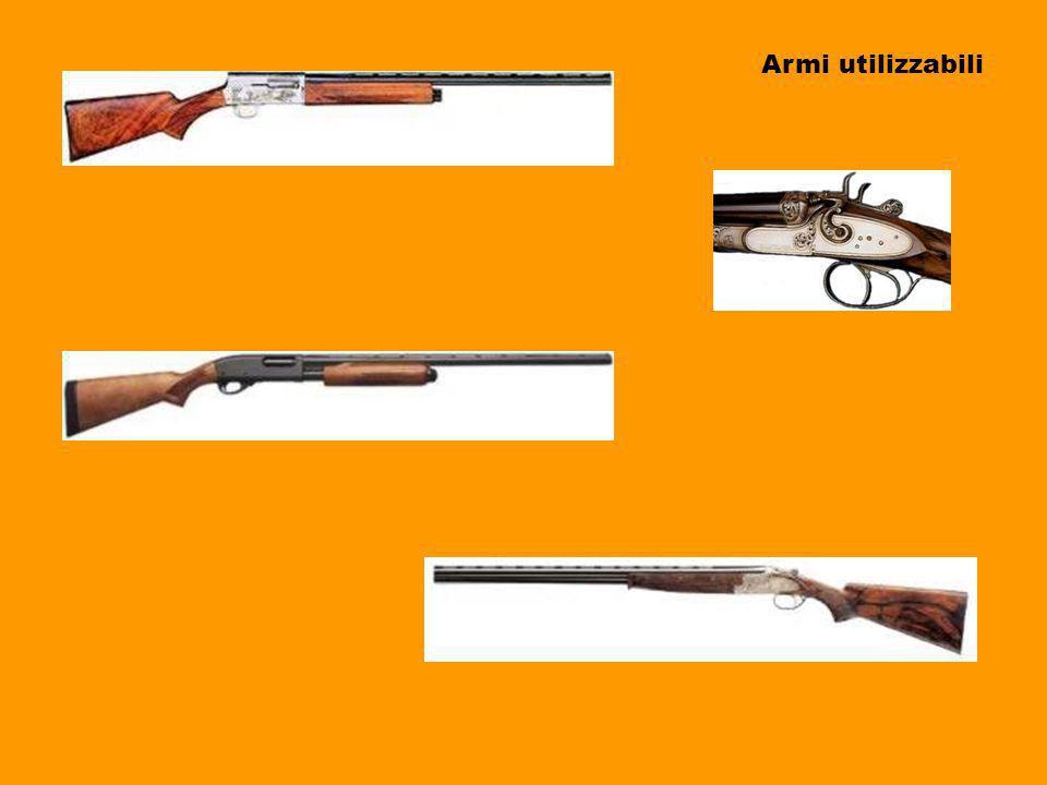 Armi utilizzabili