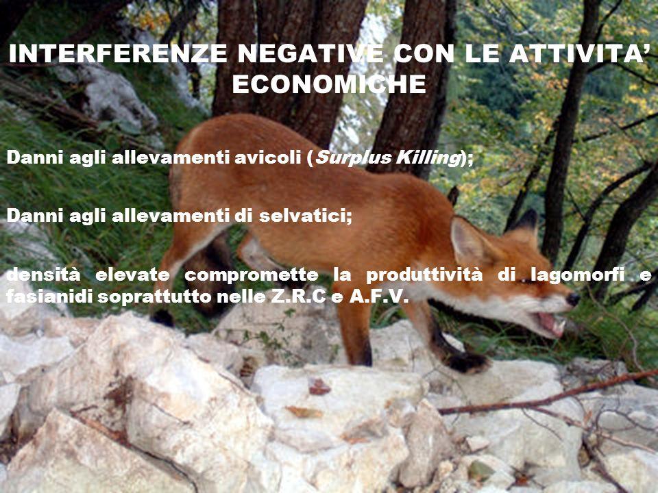 INTERFERENZE NEGATIVE CON LE ATTIVITA' ECONOMICHE