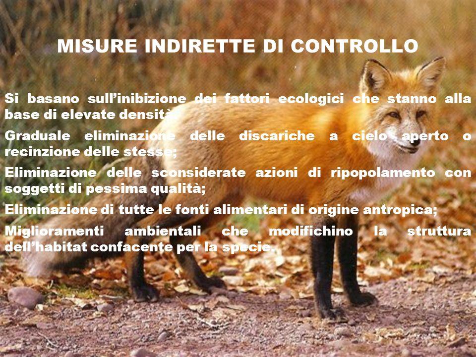 MISURE INDIRETTE DI CONTROLLO