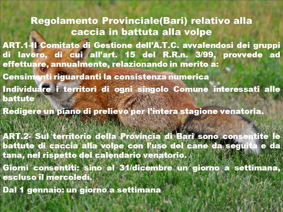 Regolamento Provinciale(Bari) relativo alla caccia in battuta alla volpe