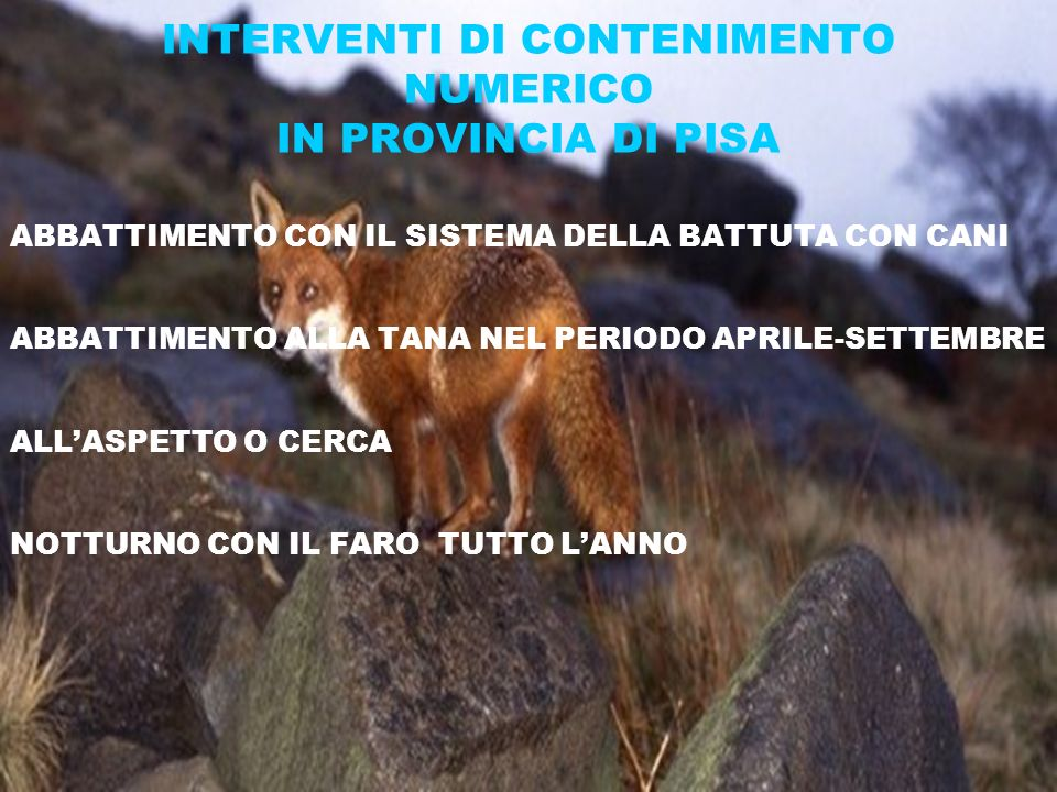 INTERVENTI DI CONTENIMENTO NUMERICO IN PROVINCIA DI PISA