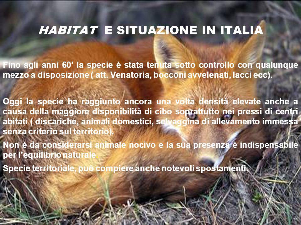 HABITAT E SITUAZIONE IN ITALIA