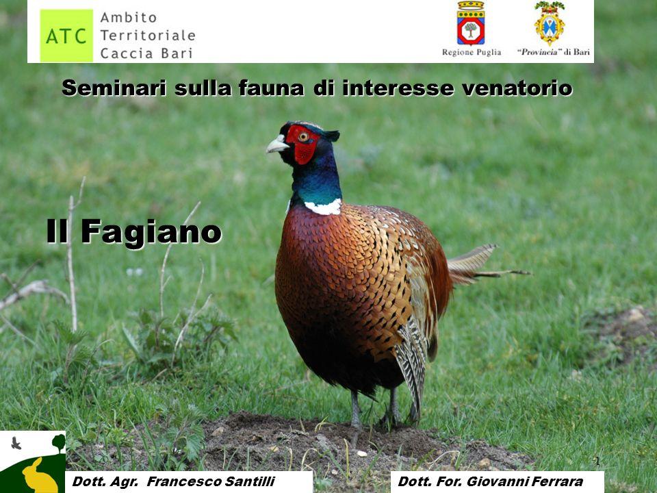 Il Fagiano Seminari sulla fauna di interesse venatorio