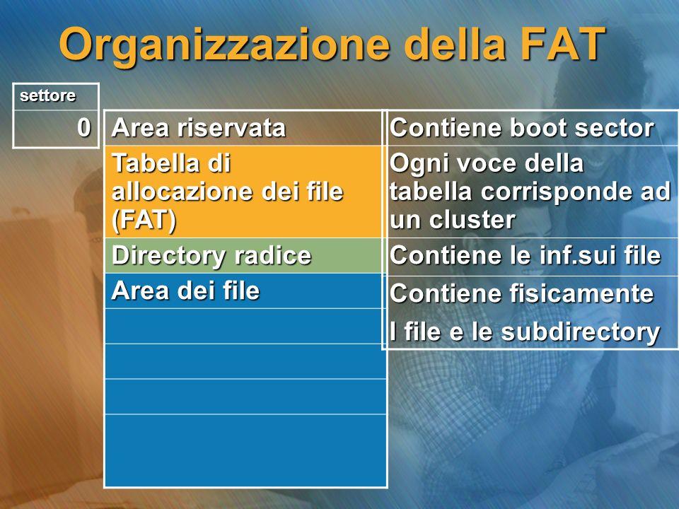 Organizzazione della FAT