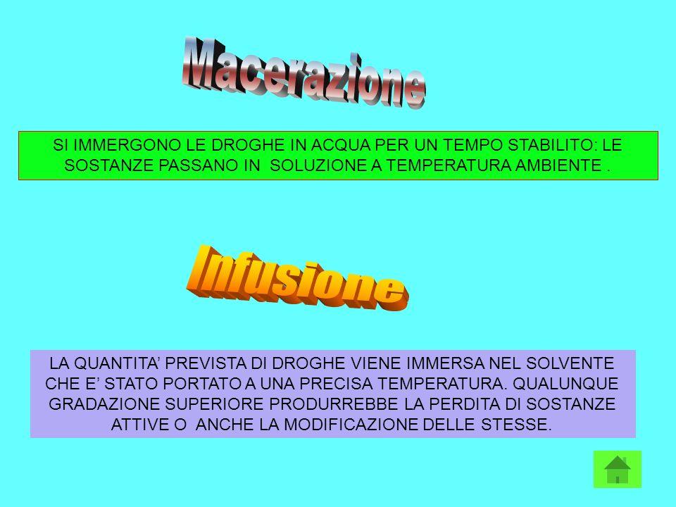 Macerazione Infusione