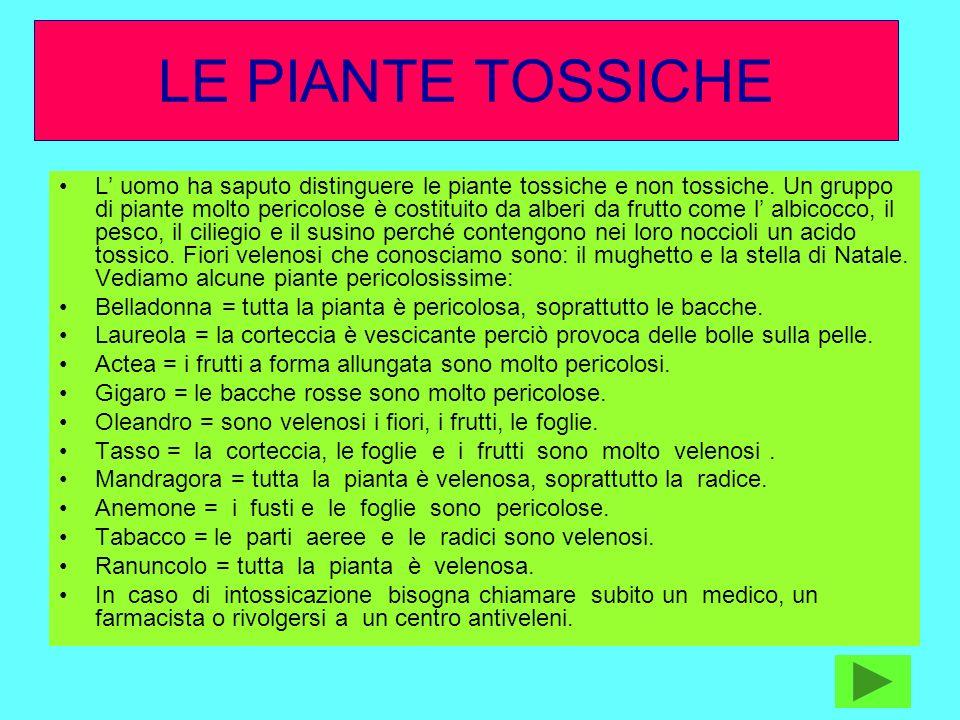 LE PIANTE TOSSICHE