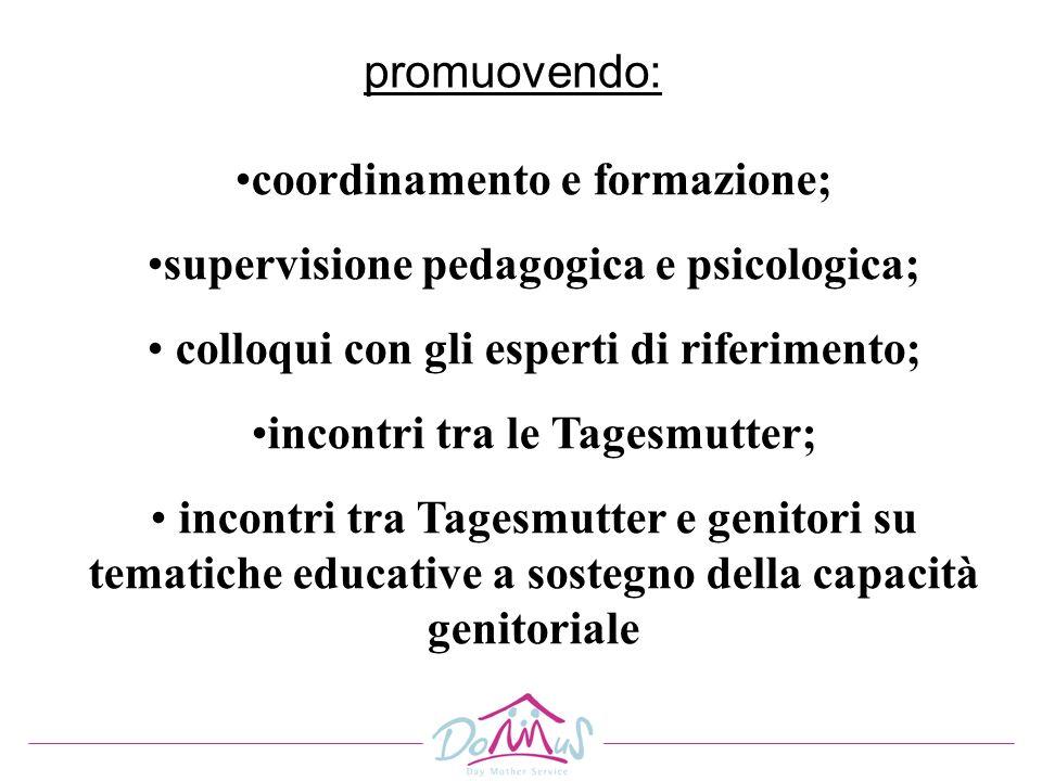 coordinamento e formazione; supervisione pedagogica e psicologica;