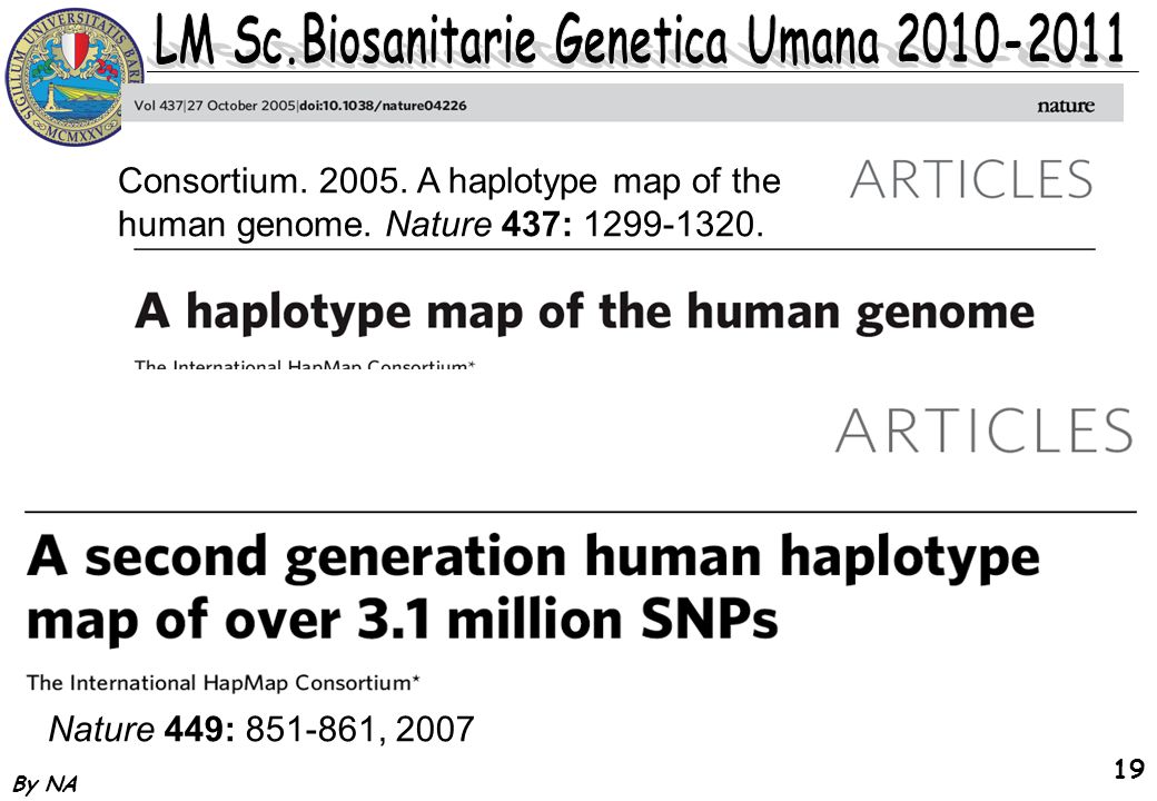 Consortium A haplotype map of the human genome