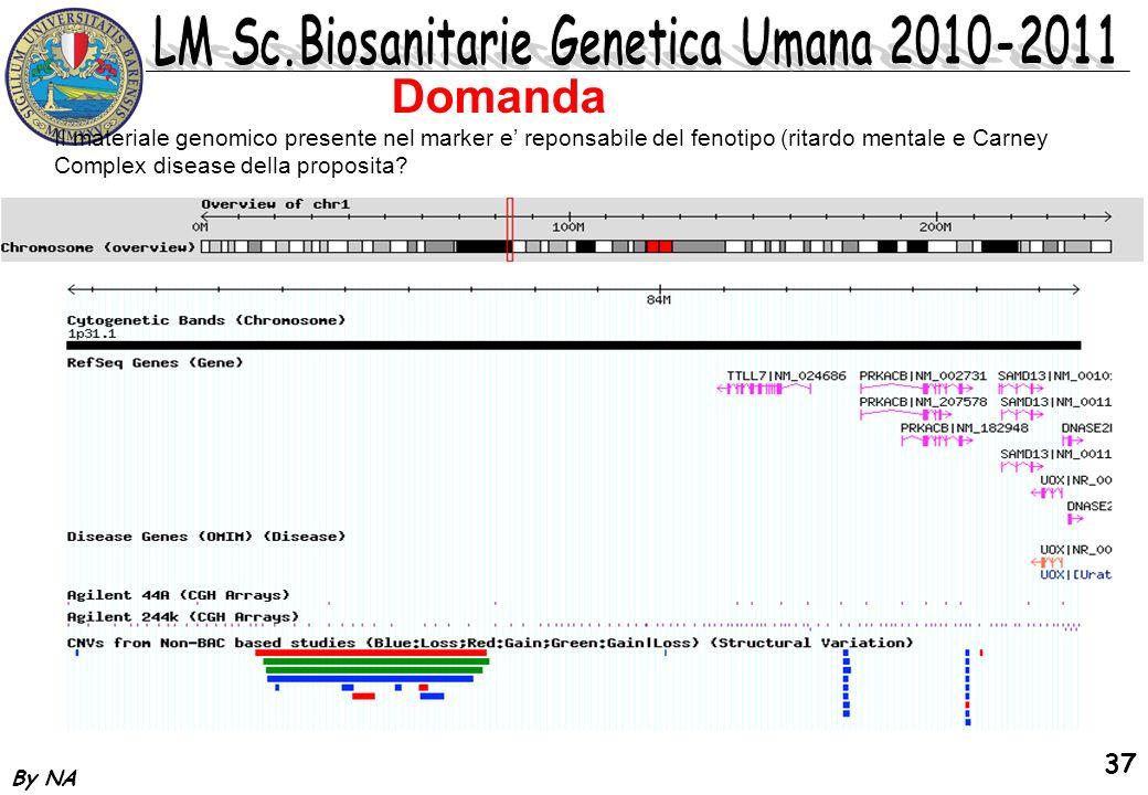Domanda Il materiale genomico presente nel marker e' reponsabile del fenotipo (ritardo mentale e Carney Complex disease della proposita
