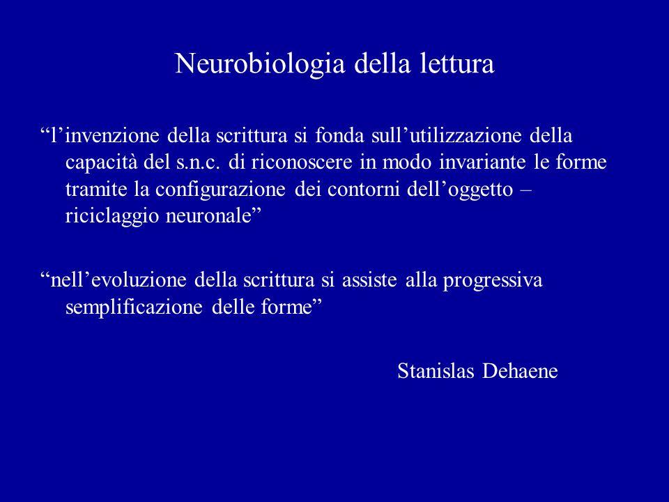 Neurobiologia della lettura