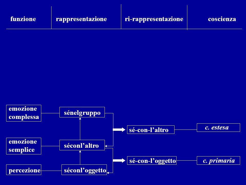funzione rappresentazione ri-rappresentazione coscienza