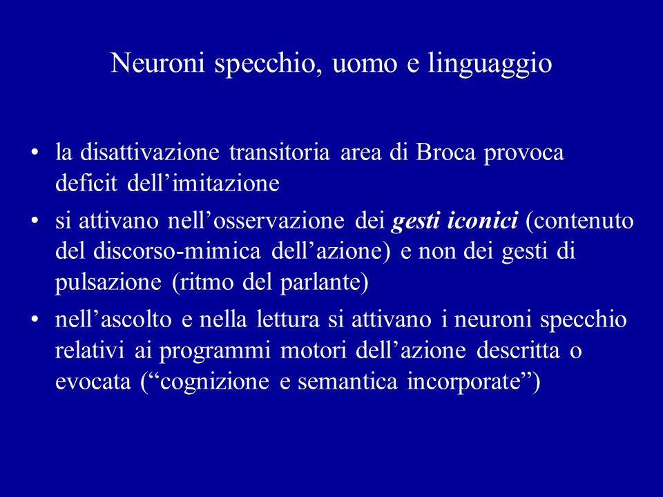 Neuroni specchio, uomo e linguaggio