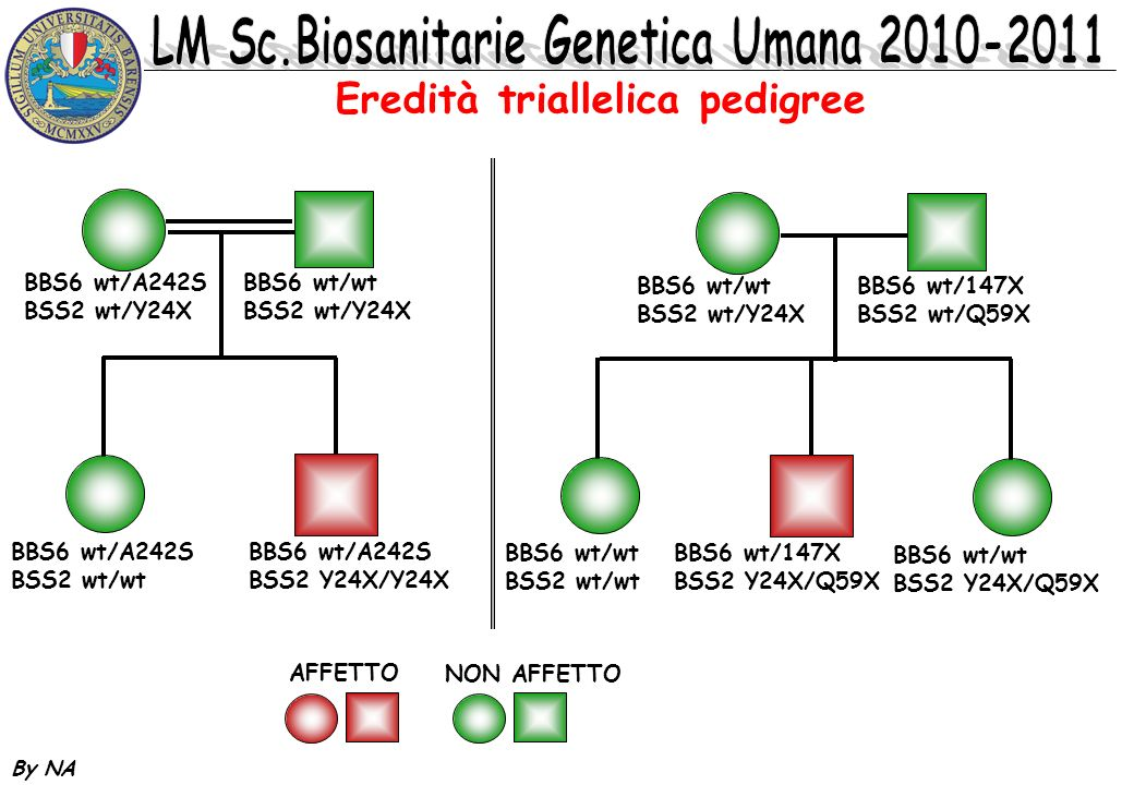 Eredità triallelica pedigree