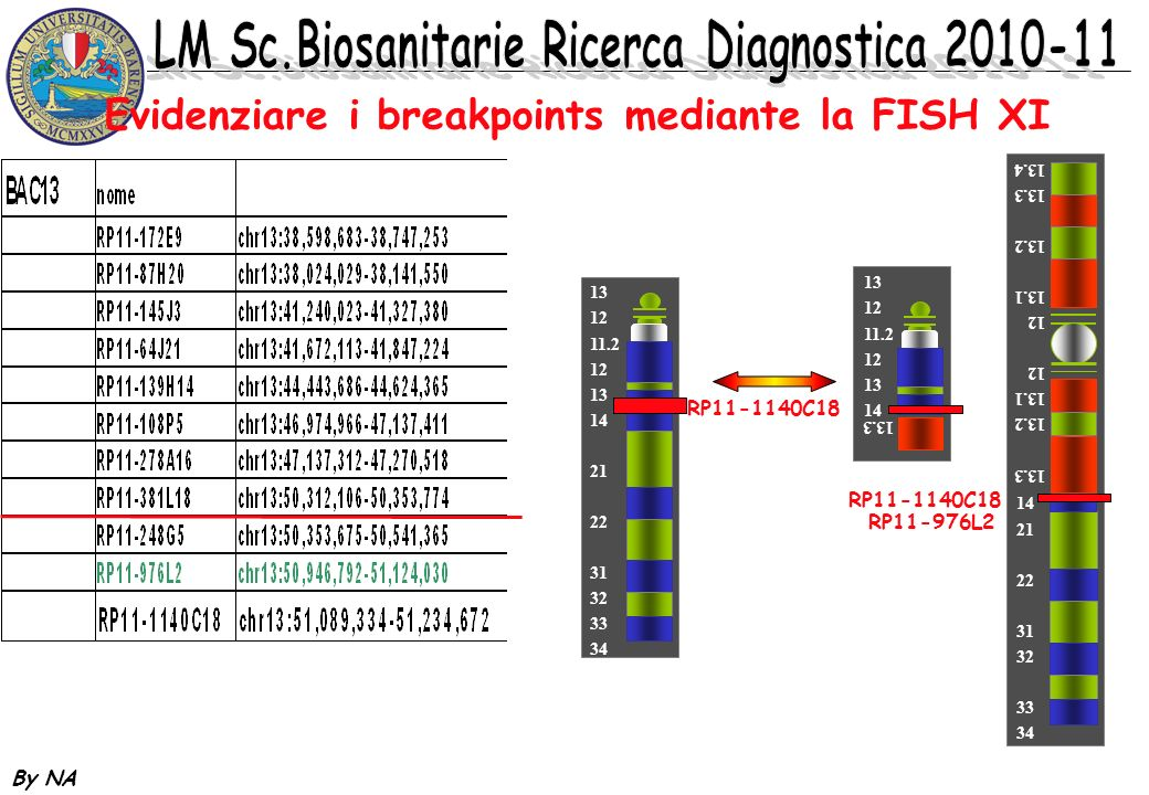 Evidenziare i breakpoints mediante la FISH XI