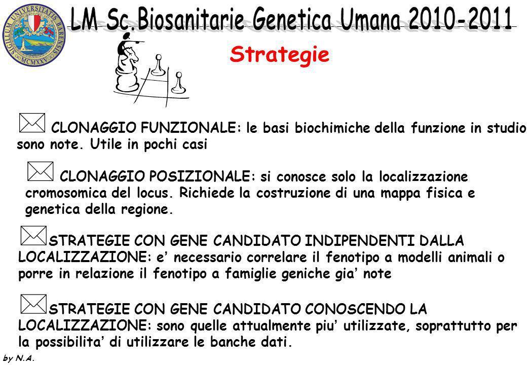 Strategie CLONAGGIO FUNZIONALE: le basi biochimiche della funzione in studio. sono note. Utile in pochi casi.