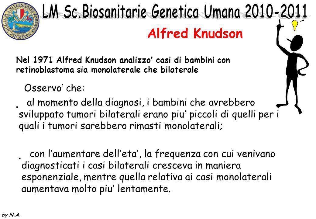 Alfred Knudson Osservo' che: