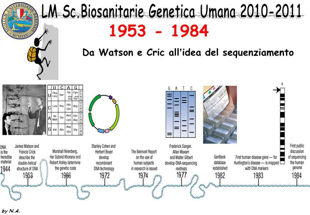 1953 - 1984 Da Watson e Cric all'idea del sequenziamento by N.A.