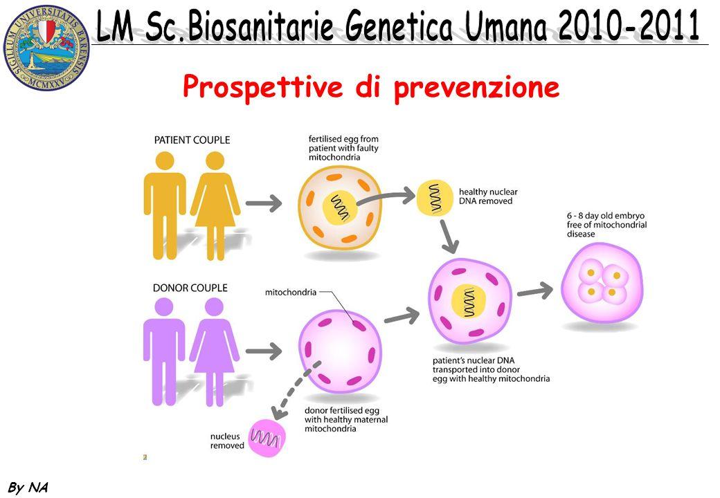Prospettive di prevenzione