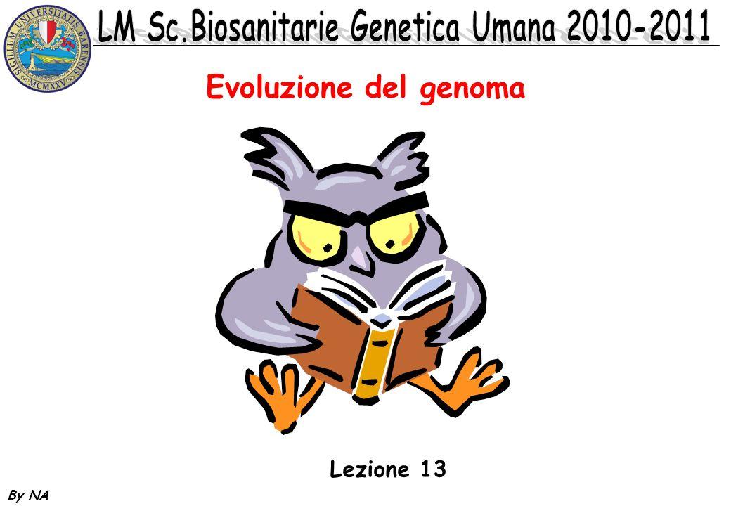 Evoluzione del genoma Lezione 13 By NA