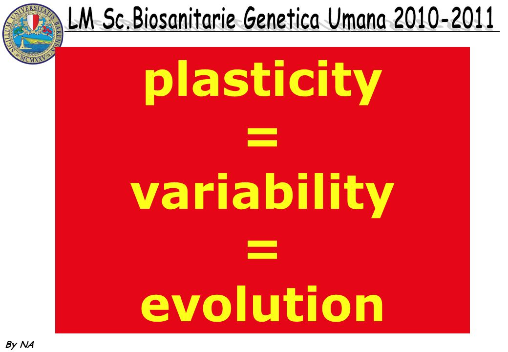 plasticity = variability evolution