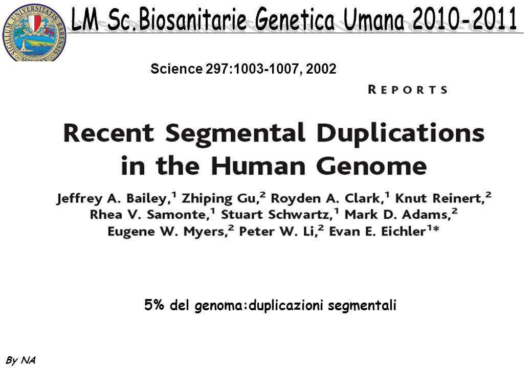 5% del genoma:duplicazioni segmentali