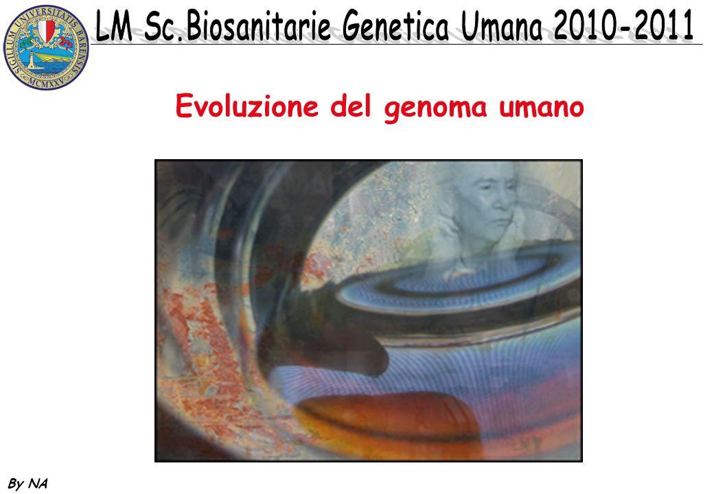 Evoluzione del genoma umano