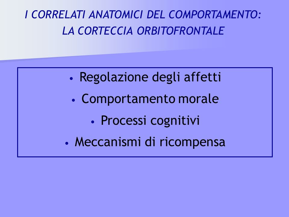 Regolazione degli affetti Comportamento morale Processi cognitivi