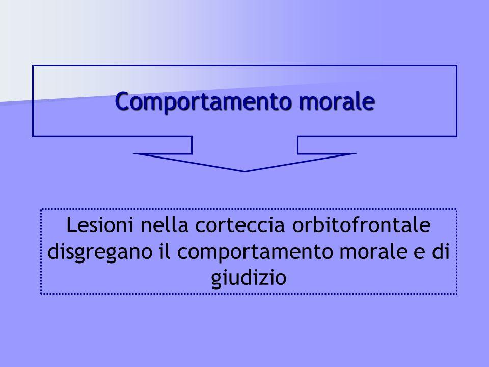 Comportamento morale Lesioni nella corteccia orbitofrontale disgregano il comportamento morale e di giudizio.