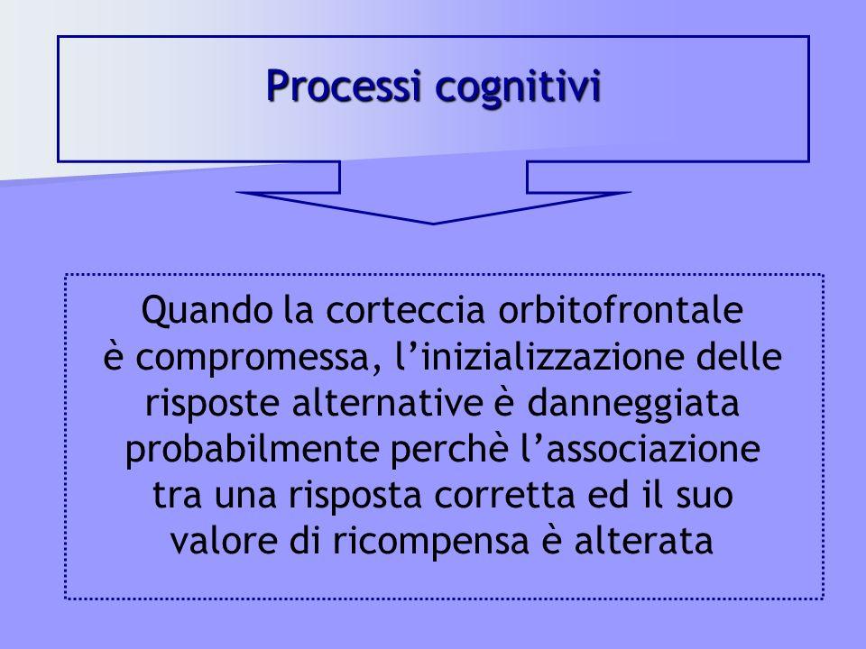 Processi cognitivi Quando la corteccia orbitofrontale