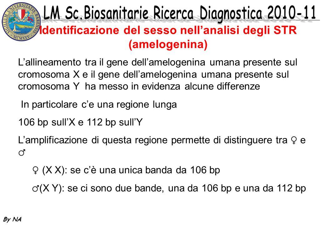 Identificazione del sesso nell'analisi degli STR (amelogenina)