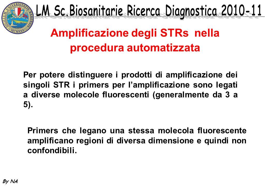 Amplificazione degli STRs nella procedura automatizzata