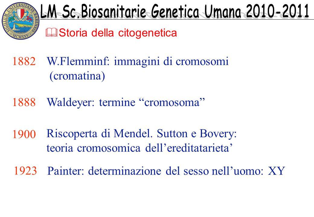 Storia della citogenetica