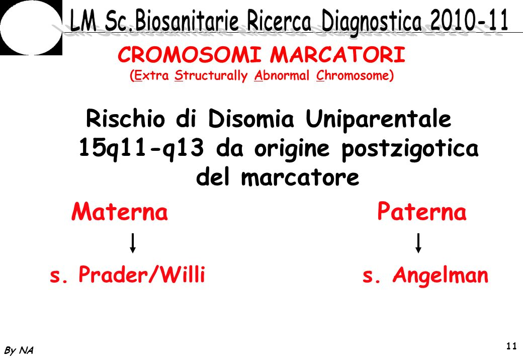 CROMOSOMI MARCATORI (Extra Structurally Abnormal Chromosome)