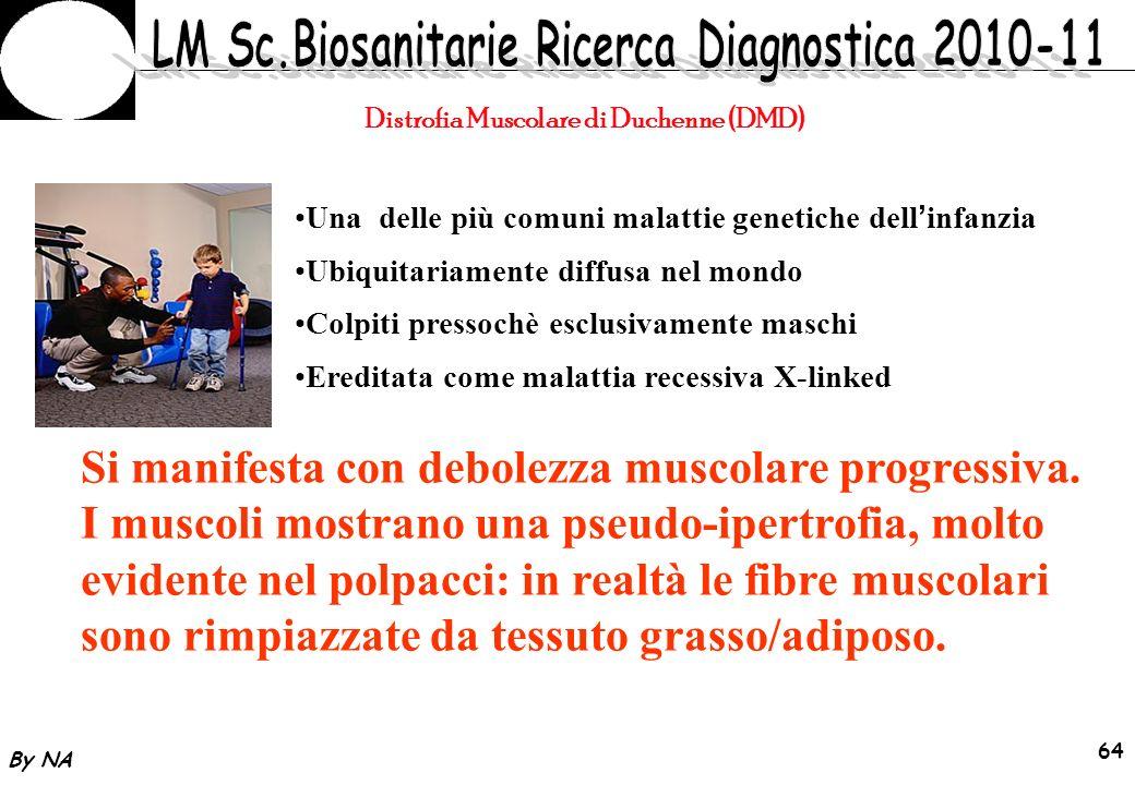 Distrofia Muscolare di Duchenne (DMD)