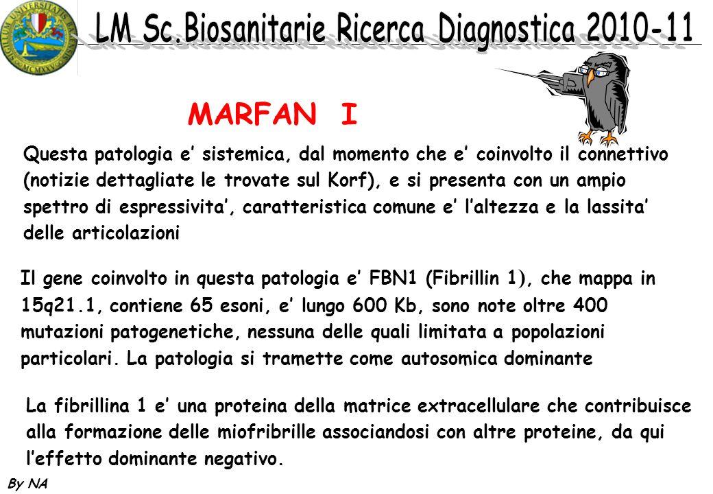 MARFAN I Questa patologia e' sistemica, dal momento che e' coinvolto il connettivo.