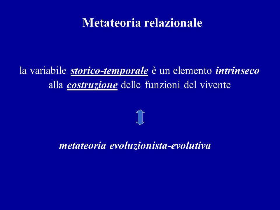 Metateoria relazionale