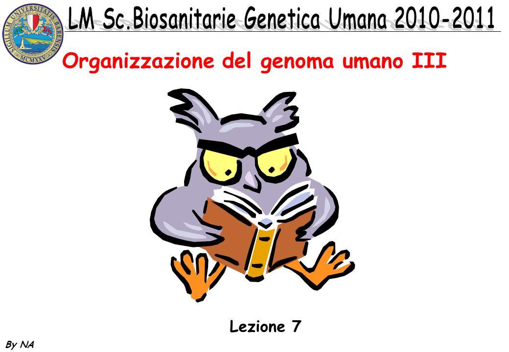 Organizzazione del genoma umano III