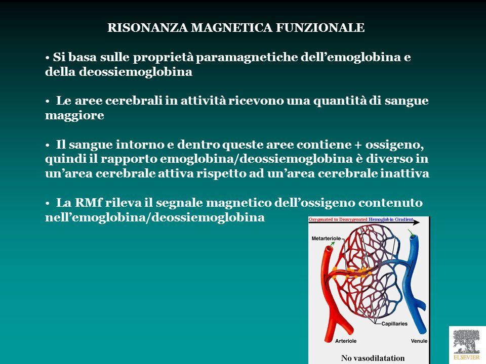 RISONANZA MAGNETICA FUNZIONALE