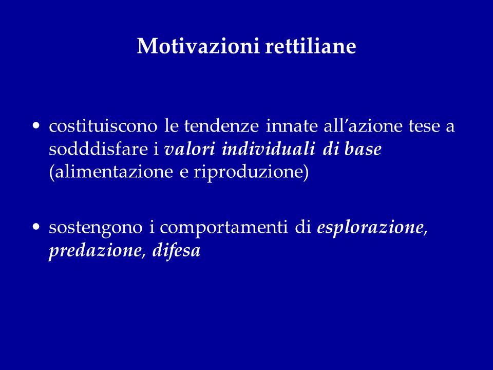Motivazioni rettiliane