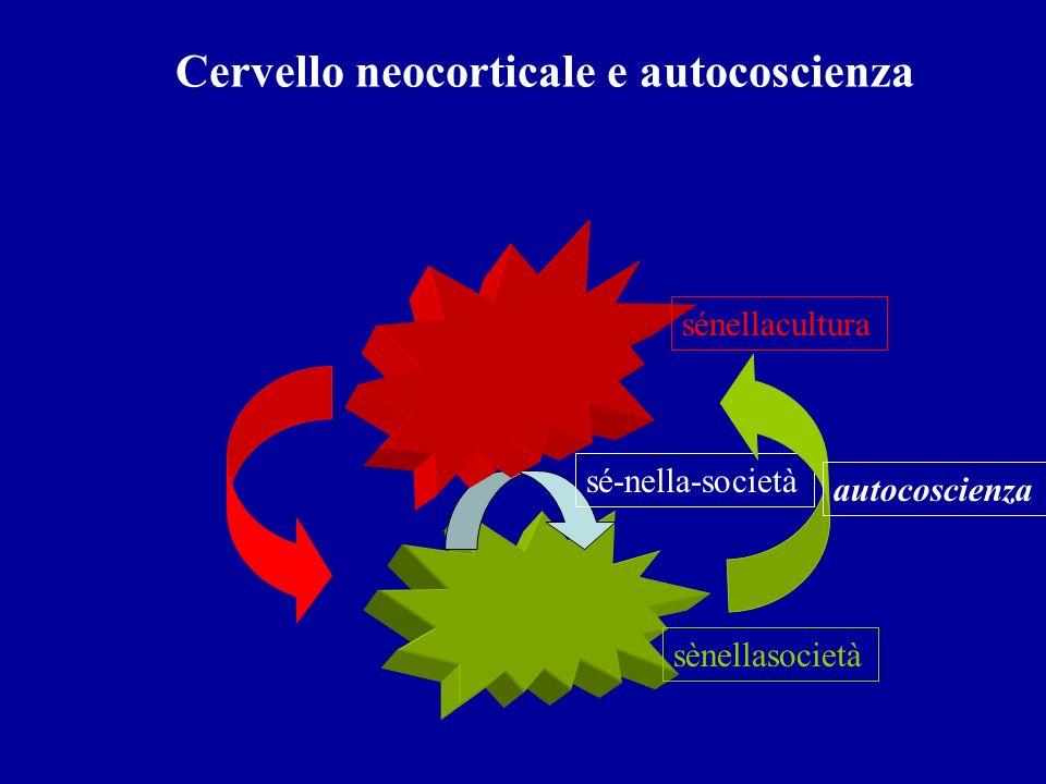 Cervello neocorticale e autocoscienza