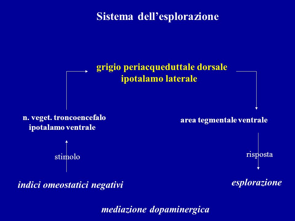 Sistema dell'esplorazione