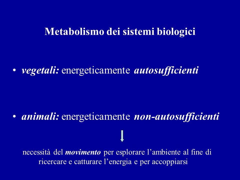 Metabolismo dei sistemi biologici