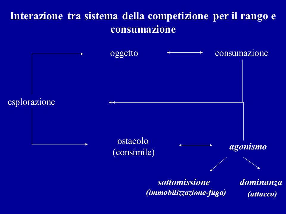 Interazione tra sistema della competizione per il rango e consumazione