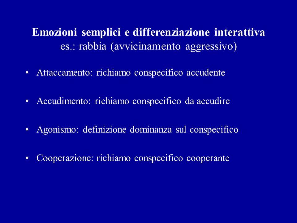 Emozioni semplici e differenziazione interattiva es